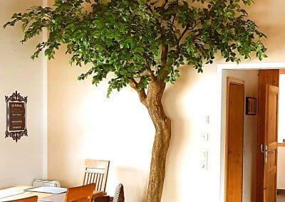 Dekorativer Kunstbaum mit geschwungenem Stamm (Höhe 320 cm).