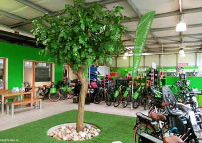 3,50 m hoher künstlicher Baum (Linde) in einem Fahrradgeschäft.