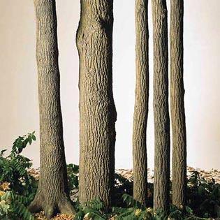Kunststämme und Baumstümpfe