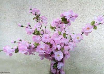 Zweig Beispiel 9 (Apfel/ Kirschblüten)