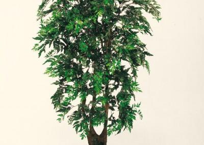 Büsche Beispiel 5 (Araliabusch)