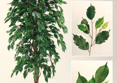 Büsche Beispiel 3 (Ficusbusch)