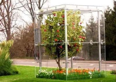 Ein künstlicher Apfelbaum mit Naturstamm.