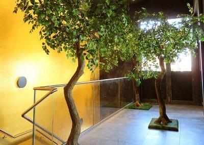 Drei kleine Kunstbäume (Höhe 240 cm) als Dekoration sowie für die Schallreduzierung des Treppenbereichs.