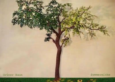 Kombination grüner Baum mit Sommereiche.