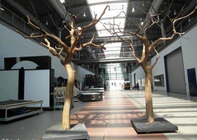Kahle Bäume von Hadjisky für eine Fernsehsendung.