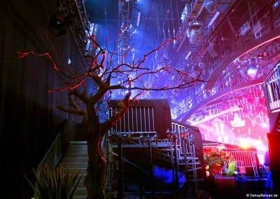 Die Ruhe vor dem Sturm: Beim Let's Dance Finale 2017 Backstage abwarten. Ein großer, kahler Kunstbaum von Hadjisky.