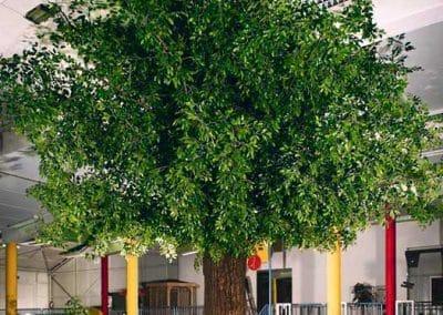 Grün belaubter, großer XXL-Kunstbaum (600 cm Höhe; Ø Krone 600 cm) mit dickem Stamm in einem Fitnesscenter.
