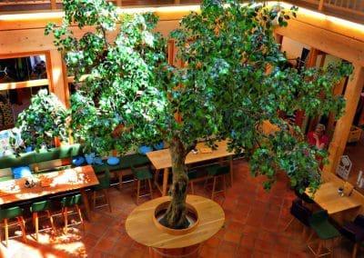 XXL Kunstbaum von Hadjisky mit Knollenstamm (Kronendurchmesser 550 cm) in einem Bistro in Salzburg.