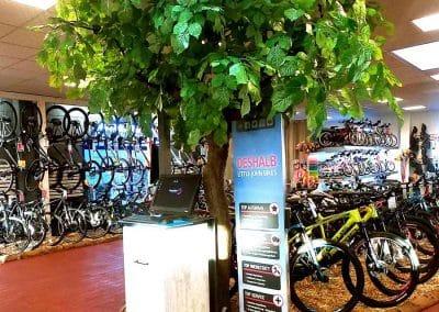 Bikes von Little John - Kunstbaum (Linde) von Hadjisky. Höhe ca. 270 cm; Filigran geschwungener Stamm mit einem Ø von ca. 20 cm.