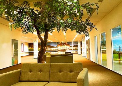 Stilvolle Auflockerung in einem Warteraum. Ein belaubter, künstlicher Baum mit gegabeltem Stamm.
