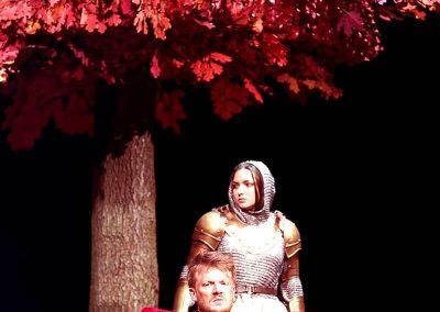 Künstlicher Baum mit roten Blättern auf einer Opernbühne in Wien.
