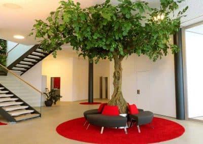 Künstlicher Lindenbaum (Höhe ca. 360 cm) mit 4-teiliger Sitzbank im Eingangsbereich eines Unternehmens.