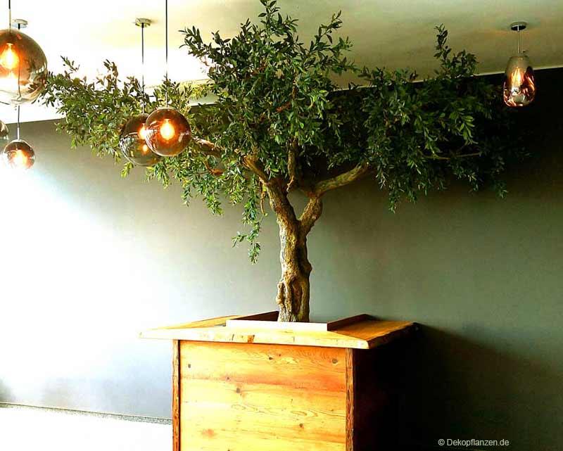 Künstlicher Olivenbaum (320 cm Höhe)