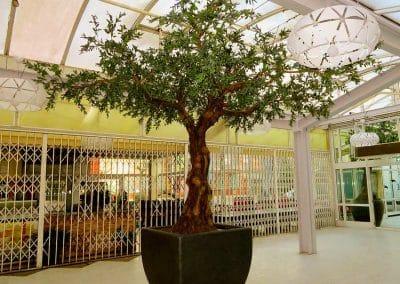 Künstlicher Olivenbaum in einem Einkaufszenter (Baumhöhe 450 cm, Ø Baumkrone 450 cm).