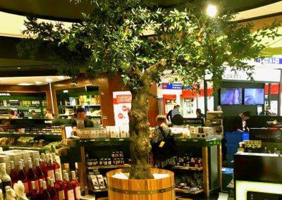 Nachher: Der künstliche Olivenbaum von Hadjisky Dekopflanzen.
