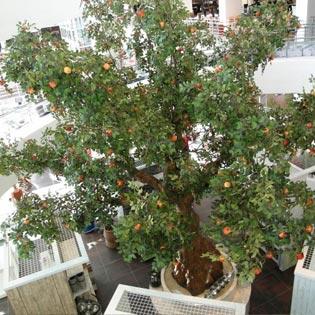 Große Kunstbäume für Hallen und große Räume