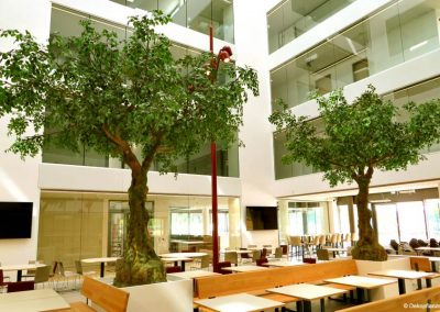 Zwei beeindruckende, 500 cm große Kunstbäume (inkl. Podest) im Atrium eines Hotels.