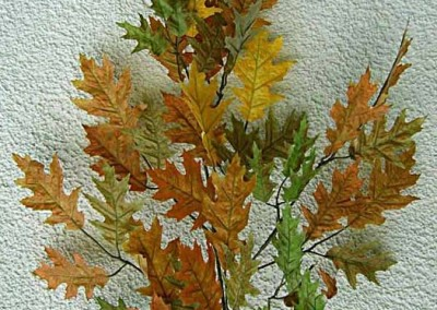 Zweig Beispiel 1 (Herbsteiche)